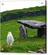 Irish Standing Stones Acrylic Print