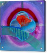 Iron Butterfly Acrylic Print