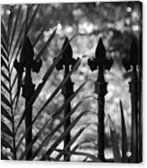 Iron Fence Acrylic Print