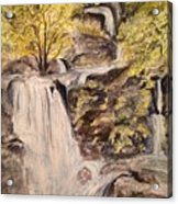 Iruppu Falls  Acrylic Print