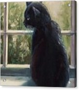 Isabella's Window Acrylic Print