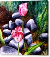 Isaiah's Tulips Acrylic Print