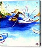 Isla Isabela Acrylic Print