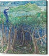 island 8, Dream Lullaby Acrylic Print
