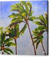 Island Palms Acrylic Print