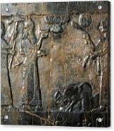 Israelite Submission Acrylic Print