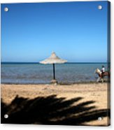 It Is A Daily Event Acrylic Print