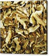 Italian Market Dried Mushrooms Acrylic Print