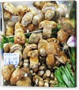 Italian Market Porcini Mushrooms  Acrylic Print