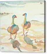 It's A Ducky Day Acrylic Print