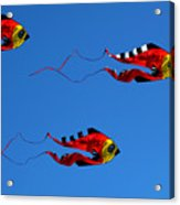 It's A Kite Kind Of Day Acrylic Print by Clayton Bruster