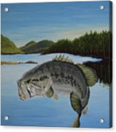 It's All About The Bass Acrylic Print