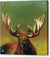 Its All About The Rack Acrylic Print