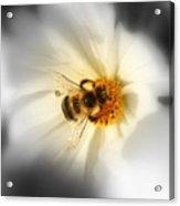 Its Good To Bee Me Acrylic Print