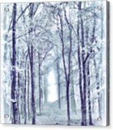 Its In The Trees Acrylic Print