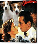 Jack Russell Terrier Art Canvas Print - Casablanca Movie Poster Acrylic Print