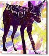 Jackal Children Watercolor Animal  Acrylic Print