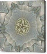 Jacket Flowers Acrylic Print