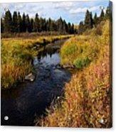 Jackfish Creek In Autumn Acrylic Print