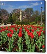 Jackson Park Spring Tulips 2 Acrylic Print