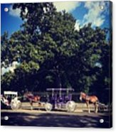 Jackson Square Carriages Acrylic Print