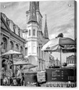 Jackson Square Scene New Orleans - Bw  Acrylic Print
