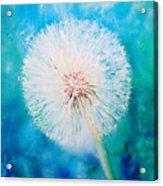 Jade Dandelion Acrylic Print