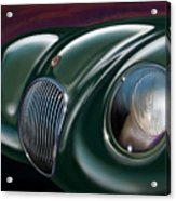 Jaguar C Type Acrylic Print by David Kyte