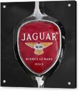 Jaguar Medallion Acrylic Print