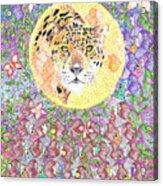Jaguar Night Acrylic Print