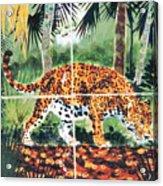 Jaguar On The Hunt Acrylic Print