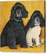 Jake And Lucy Acrylic Print