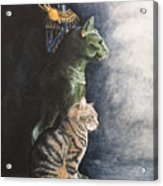 Jake And The Ancestors-pet Portrait Acrylic Print