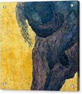 Jan 1 Acrylic Print by Valeriy Mavlo