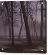 January Fog 1 Acrylic Print