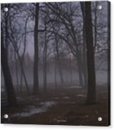 January Fog 2 Acrylic Print