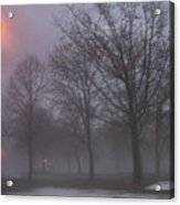 January Fog 3 Acrylic Print