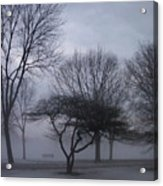January Fog 6 Acrylic Print