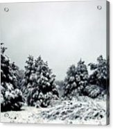 January Snow Iv Acrylic Print