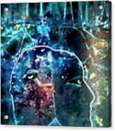 Janus Acrylic Print