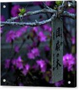 Japan 1 Acrylic Print