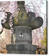 Japanese Lantern Acrylic Print