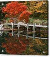 Japanese Reflection Acrylic Print