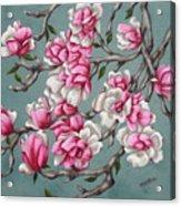 Japenese Magnolia Acrylic Print
