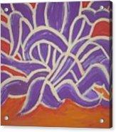 Java Aguave Acrylic Print