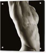 Javier Torso 2 Acrylic Print
