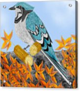 Jay with Corn and Leaves Acrylic Print