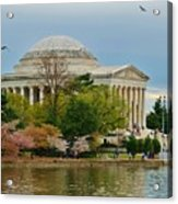 Jefferson Memorial, Springtime In Dc Is When Things Bloom, Like The Japanese Cherry Trees Acrylic Print