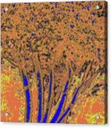 Jelks Fingerling 14 Acrylic Print