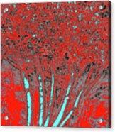 Jelks Fingerling 16 Acrylic Print